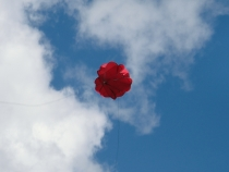 SF.035 BT Winden-Seilschirm für Stahlseile, Farbe rot