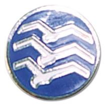 Segelfliegerabz.Nr.12 C-Schwinge 22mm